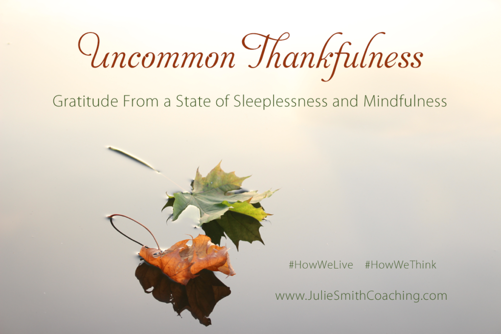 Uncommon Thankfulness:  Gratitude from a State of Sleeplessness and Mindfulness